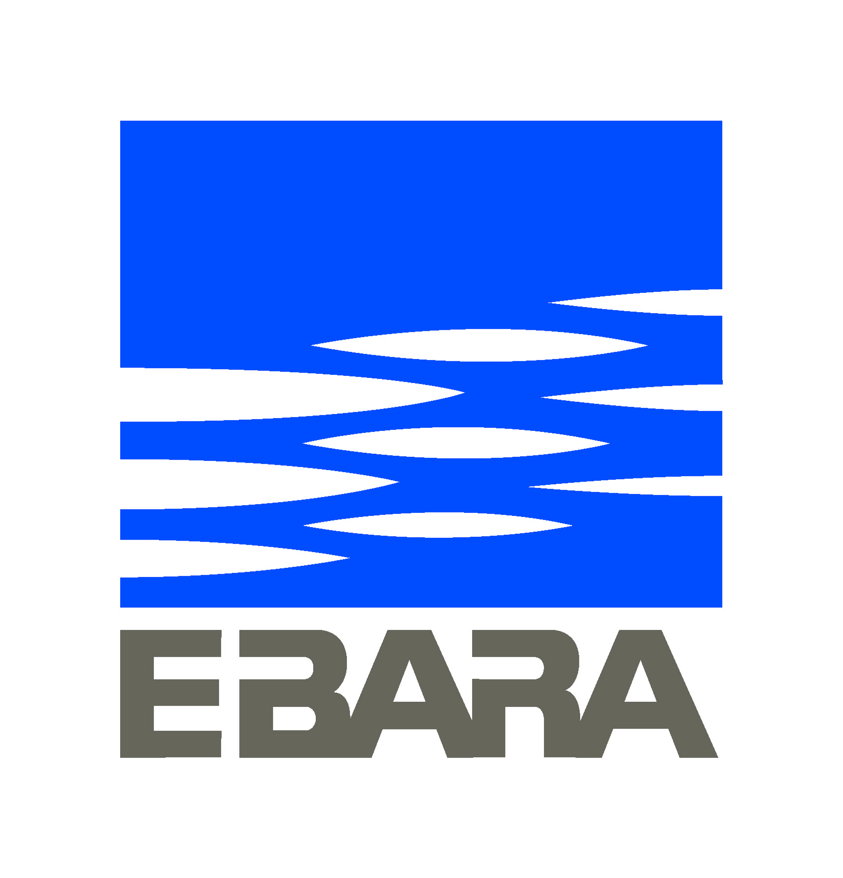 Ebara Pumps Europe SpA